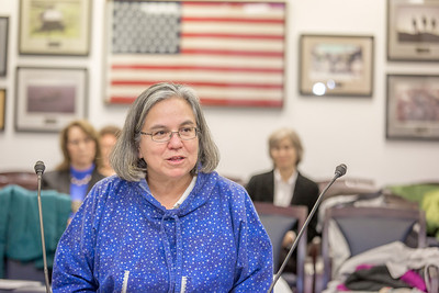 Kimberly Strong, a senior in UAF's rural development program from Klukwan, presents testimony before a committee of her peers during a mock legislative hearing as part of a weeklong seminar on understanding the legislative process in Juneau.  Filename: AAR-14-4056-80.jpg