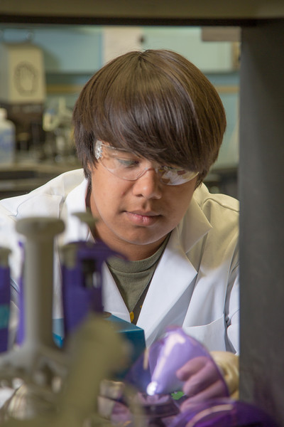 "Kyran Ruerup from Fairbanks took part in the six-week RAHI Research summer residence program, learning molecular biology and genetics while working in a research lab on the Fairbanks campus.  <div class=""ss-paypal-button"">Filename: AAR-12-3459-058.jpg</div><div class=""ss-paypal-button-end"" style=""""></div>"