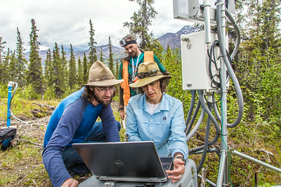 Associate professor Margaret Darrow, right, reads data from a weather station installed on one of  several frozen debris lobes which have appeared along the Dietrich River valley in the southern Brooks Range. Darrow, along with state geologists Ronald Daanen, left, and Trent Hubbard, are trying to figure out how to slow down or stop the movement of the lobes which threaten the Dalton Highway and the nearby trans-Alaska pipeline.  Filename: AAR-14-4214-472.jpg