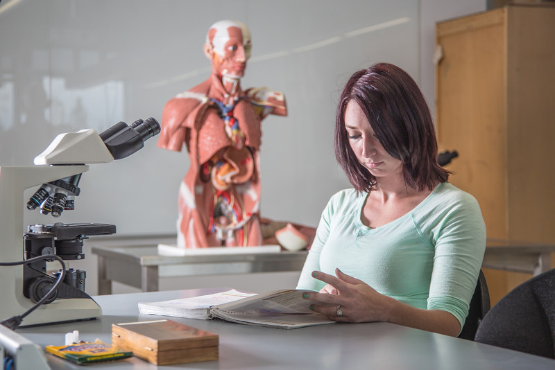 """Kelsey Gordon studies for a quiz in her summer sessions anatomy and physiology lab in the Murie Building.  <div class=""""ss-paypal-button"""">Filename: AAR-13-3856-1.jpg</div><div class=""""ss-paypal-button-end"""" style=""""""""></div>"""