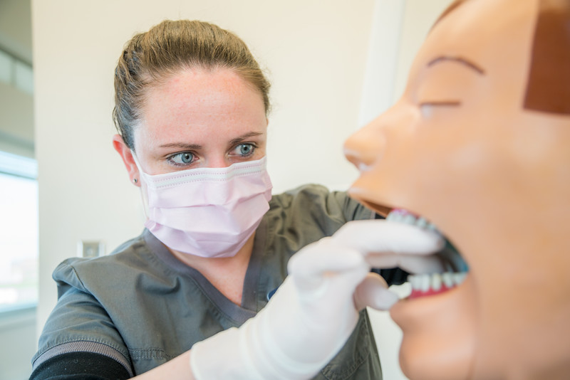 "CTC dental assistant student Abigail Bazon practices digital radiography at the program's facility on Barnette Street in downtown Fairbanks.  <div class=""ss-paypal-button"">Filename: AAR-16-4873-134.jpg</div><div class=""ss-paypal-button-end""></div>"