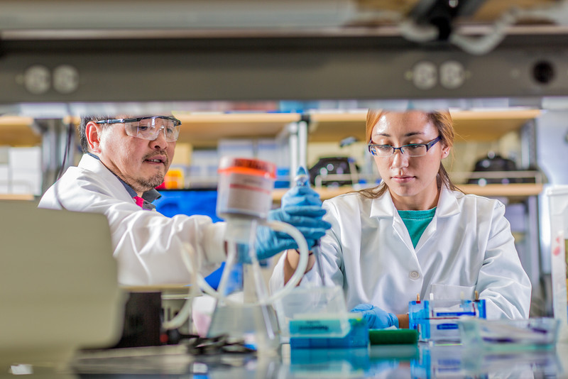 """Associate professor Jack Chen looks on as senior engineering major Shanann Hoyos performs gel electrophoresis to check results from a polymerase chain reaction assay in the Murie Building virology lab.  <div class=""""ss-paypal-button"""">Filename: AAR-13-3989-131.jpg</div><div class=""""ss-paypal-button-end"""" style=""""""""></div>"""