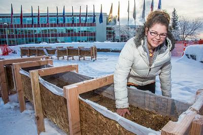 Civil engineering major Katrina Monta levels out sawdust mixed with water that when frozen, hardens into a substance many times stronger than concrete. Katrina and others are hard at work on this year's ice arch, scheduled for completion Feb. 20.  Filename: AAR-13-3718-26.jpg