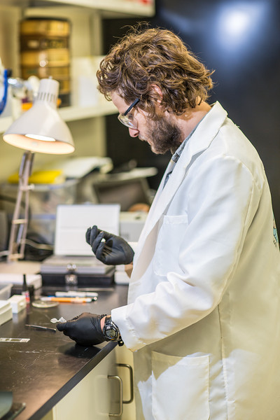 "Ph.D. candidate Sean Brennan works in a lab in the Water and Environmental Research Center in the Duckering Building.  <div class=""ss-paypal-button"">Filename: AAR-12-3579-01.jpg</div><div class=""ss-paypal-button-end"" style=""""></div>"