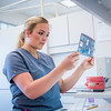 "Lauren Slater, a student in the UAF Community and Technical College's dental assistant program, studies a set of radiographs during an open lab exercise at the school's facility on Barnette Street in downtown Fairbanks.  <div class=""ss-paypal-button"">Filename: AAR-16-4873-153.jpg</div><div class=""ss-paypal-button-end""></div>"