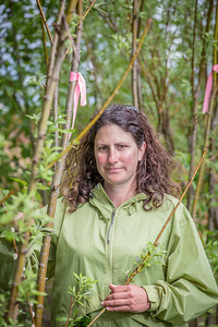 Amanda Byrd, a research technician with the Alaska Center for Energy and Power, collects data on a plot of willows being grown on the experiment farm to study their potential use as a source of biofuel.  Filename: AAR-13-3853-81.jpg