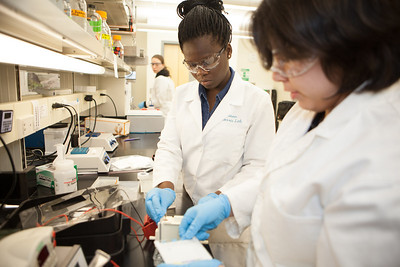 Olalade Olawale works with fellow Chicago student Isabell Raymundo with fish samples taken in Antarctica.  Filename: AAR-12-3457-41.jpg