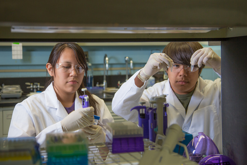 "Jacinta Matthias from Kotlik and Kyran Ruerup from Fairbanks took part in the six-week RAHI Research summer residence program, learning molecular biology and genetics while working in a research lab on the Fairbanks campus.  <div class=""ss-paypal-button"">Filename: AAR-12-3459-066.jpg</div><div class=""ss-paypal-button-end"" style=""""></div>"