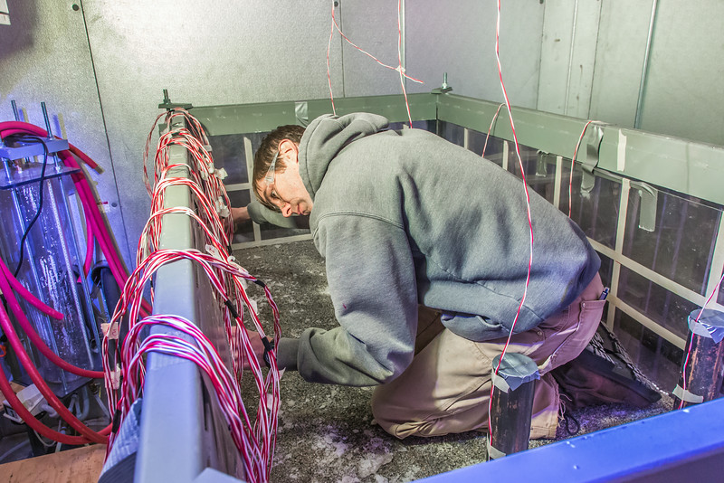"""Tom Polasek, a senior petroleum engineering major, works on constructing a simulated permafrost environment in a Duckering Building cold room. The project seeks to monitor the effects of heat from the wells and prevent the thawing of permafrost on Alaska's North Slope oil fields.  <div class=""""ss-paypal-button"""">Filename: AAR-14-4076-33.jpg</div><div class=""""ss-paypal-button-end""""></div>"""