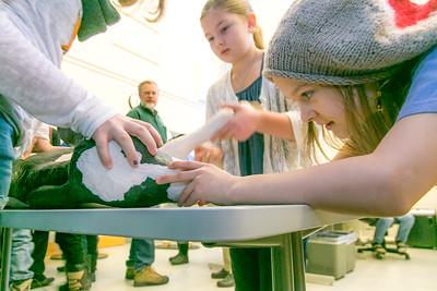 Students in the Chinook Montessori Charter School tour the UAF Veterinary Medicine program Feb. 5, 2015.  Filename: AAR-15-4446-5.jpg