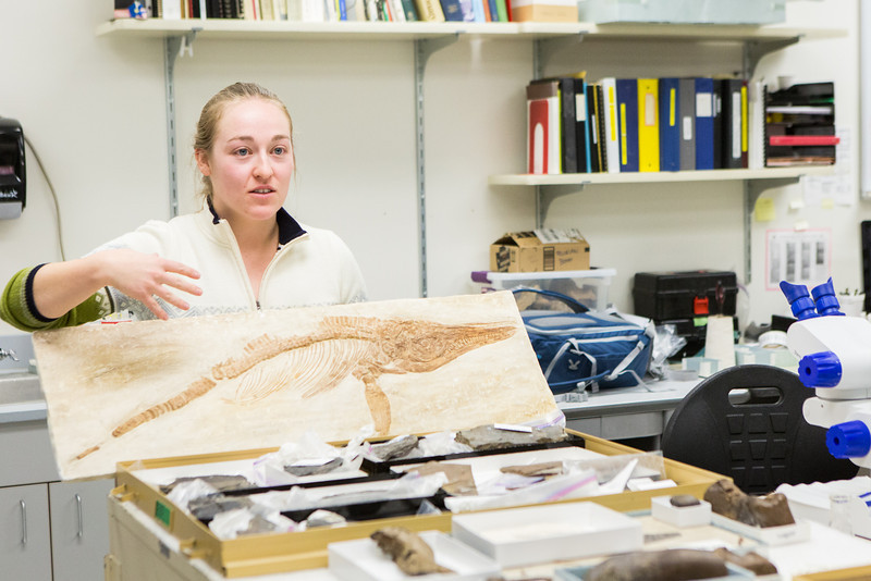 "Collection Specialist Julie Rousseau presents a replica of a fossilized ichthyosaur during to a group of students during the Life in the Age of Dinosaurs lab where they toured the Museum of the North's normally unseen lower level.  <div class=""ss-paypal-button"">Filename: AAR-14-4066-40.jpg</div><div class=""ss-paypal-button-end""></div>"