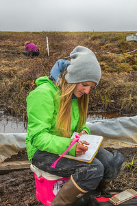 Kelsey Blake, a graduate student from the University of Victoria in British Columbia, collects water samples from a research site near the headwaters of the Kuparuk River on Alaska's North Slope.  Filename: AAR-14-4217-069.jpg