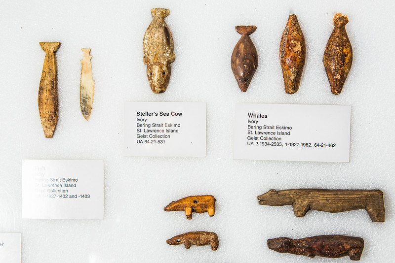 """An image of Alaska Native artifacts from the Geist Collection exhibited at the University of Alaska Museum of the North.  <div class=""""ss-paypal-button"""">Filename: AAR-16-4904-18-Edit.jpg</div><div class=""""ss-paypal-button-end""""></div>"""