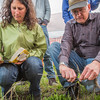 "Amanda Byrd, a research technician with the Alaska Center for Energy and Power, works with Steven Sparrow, dean of UAF's College of Natural Resources and Agricultural Sciences, to collect data on a plot of willows being grown on the experiment farm to study their potential use as a source of biofuel. A group of ACEP interns look on.  <div class=""ss-paypal-button"">Filename: AAR-13-3853-13.jpg</div><div class=""ss-paypal-button-end"" style=""""></div>"