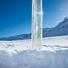"A coring tube protrudes through the snow on the surface of the Jarvis Glacier. A UAF research team is nvestigating future flow in rivers coming directly from glaciers, as bridges and road networks can be affected by varying water levels.  <div class=""ss-paypal-button"">Filename: AAR-13-3795-694.jpg</div><div class=""ss-paypal-button-end"" style=""""></div>"