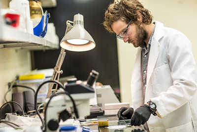 Ph.D. candidate Sean Brennan works in a lab in the Water and Environmental Research Center in the Duckering Building.  Filename: AAR-12-3579-12.jpg