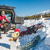 "Research Assistant Professor Anna Liljedahl unloads gear before taking a helicopter to access sites on the Jarvis Glacier, about 35 miles south of Delta Junction. Lilhedahl is investigating future flow in rivers coming directly from glaciers, as bridges and road networks can be affected by varying water levels.  <div class=""ss-paypal-button"">Filename: AAR-13-3795-13.jpg</div><div class=""ss-paypal-button-end"" style=""""></div>"