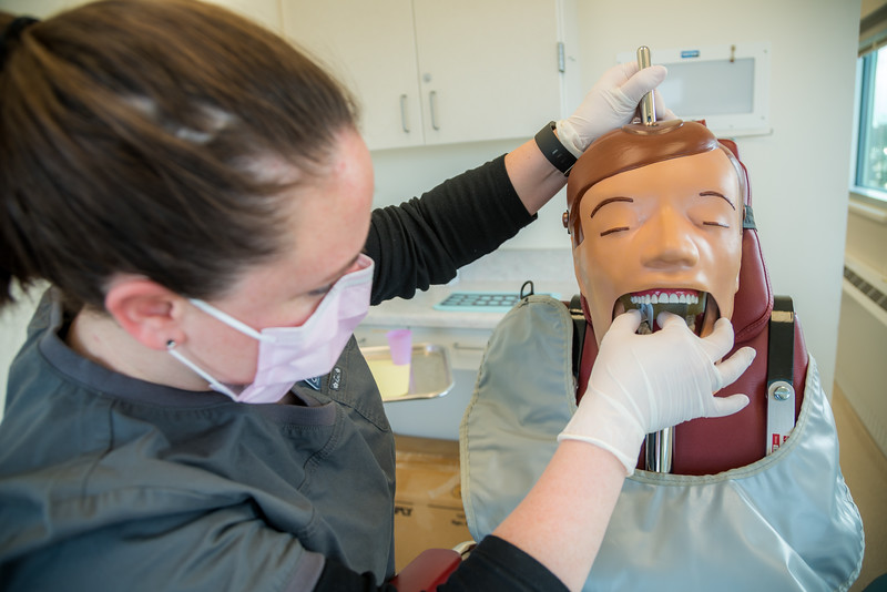 """CTC dental assistant student Abigail Bazon practices digital radiography at the program's facility on Barnette Street in downtown Fairbanks.  <div class=""""ss-paypal-button"""">Filename: AAR-16-4873-103.jpg</div><div class=""""ss-paypal-button-end""""></div>"""