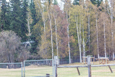 An Aeryon Scout quadcopter, featuring a top speed of 30 mph and maximum flight time of 20 minutes, will be used to conduct a series of aerial flights this summer supporting wildlife research activities at UAF's Large Animal Research Station.  Filename: AAR-14-4172-117.jpg