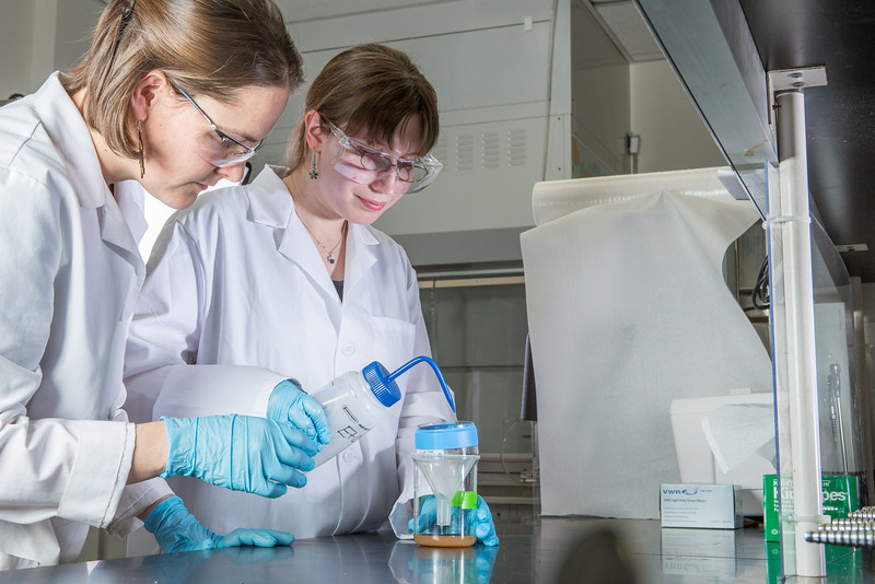 """Assistant professor Sarah Hayes, left, works with senior Kjersten Williams to complete a procedure in a Reichardt Building chemstry lab.  <div class=""""ss-paypal-button"""">Filename: AAR-12-3598-026.jpg</div><div class=""""ss-paypal-button-end"""" style=""""""""></div>"""
