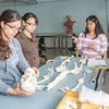 "Undergraduates Heather Bruhn, left, and Michelle Negrete work with teaching assistant Sophie Chowdhury during their summer sessions anatomy and physiology lab in the Murie Building.  <div class=""ss-paypal-button"">Filename: AAR-13-3856-87.jpg</div><div class=""ss-paypal-button-end"" style=""""></div>"