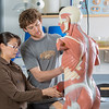 "Michelle Negrete and Walter Hafner complete a procedure during their summer sessions anatomy and physiology lab in the Murie Building.  <div class=""ss-paypal-button"">Filename: AAR-13-3856-54.jpg</div><div class=""ss-paypal-button-end""></div>"