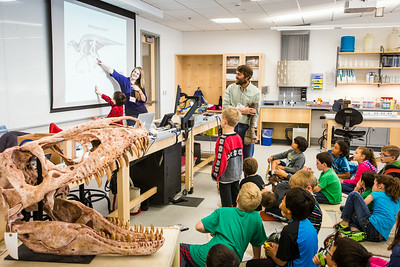 Youngsters learn all about dinosaurs in Summer Sessions' DinoCamp at the Murrie Building.  Filename: AAR-14-4242-105.jpg