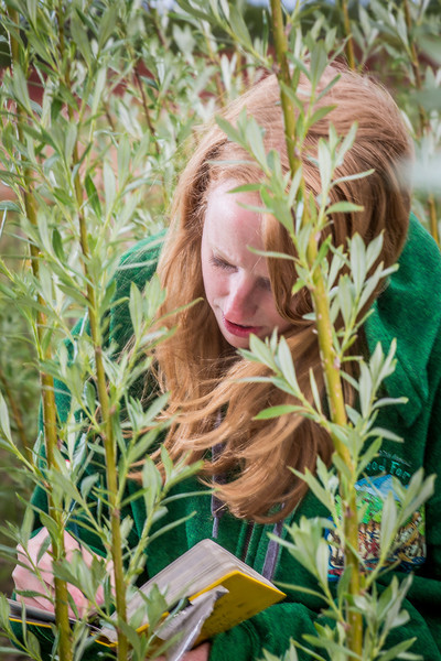 """School of Natural Resources and Agricultural Sciences graduate student Haley McIntyre measures willows in a plot under cultivation on UAF's experiment farm. She's helping to monitor the growth of native plant species for their potential use as biomass fuels.  <div class=""""ss-paypal-button"""">Filename: AAR-13-3853-42.jpg</div><div class=""""ss-paypal-button-end"""" style=""""""""></div>"""