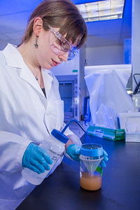 Kjersten Williams completes a procedure in a Reichardt Building chemstry lab.  Filename: AAR-12-3598-065.jpg