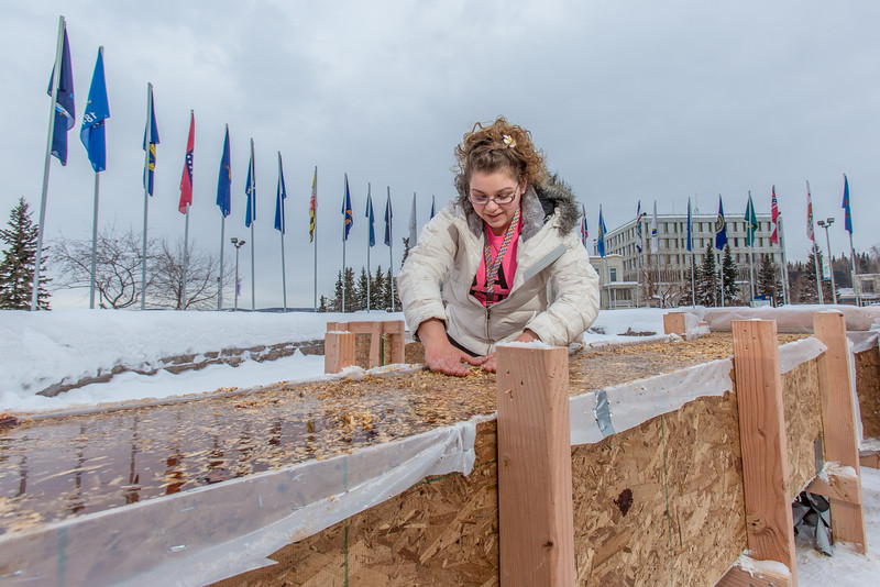 "Civil engineering major Katrina Monta smooths the surface of a combination of sawdust and water that when frozen, hardens into a substance many times stronger than concrete. Katrina and others are hard at work on this year's traditional ice arch, designed and built each year by engineering students.  <div class=""ss-paypal-button"">Filename: AAR-13-3727-18.jpg</div><div class=""ss-paypal-button-end"" style=""""></div>"