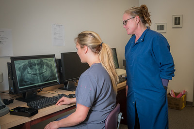 UAF Community and Technical College assistant professor Jenifer Filotei and student Lauren Slater study a computer image of a radiograph x-ray at the school's facility on Barnette Street in downtown Fairbanks.  Filename: AAR-16-4873-160.jpg