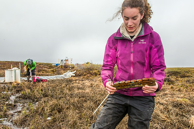 Ludda Ludwig, a Ph.D. candidate with UAF's College of Natural Science and Mathematics, collects water samples from a research site near the headwaters of the Kuparuk River on Alaska's North Slope.  Filename: AAR-14-4217-054.jpg