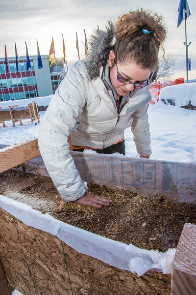 """Civil engineering major Katrina Monta levels out sawdust mixed with water that when frozen, hardens into a substance many times stronger than concrete. Katrina and others are hard at work on this year's ice arch, scheduled for completion Feb. 20.  <div class=""""ss-paypal-button"""">Filename: AAR-13-3718-23.jpg</div><div class=""""ss-paypal-button-end"""" style=""""""""></div>"""