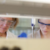 "Julia Covell, right, works with Associate Professor Kristin O'Brien's studying tissue samples of fish from Antarctica in a lab in the Arctic Health Research Building.  <div class=""ss-paypal-button"">Filename: AAR-12-3365-040.jpg</div><div class=""ss-paypal-button-end"" style=""""></div>"