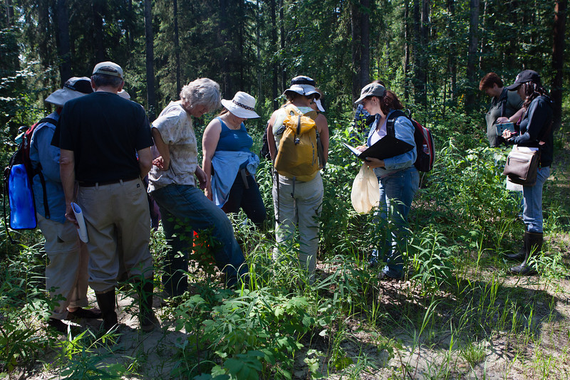 """Students identify local flora around campus during Summer Sessions and Life Long Learning's Intro to Flora class June 23, 2012 on campus.  <div class=""""ss-paypal-button"""">Filename: AAR-12-3454-33.jpg</div><div class=""""ss-paypal-button-end"""" style=""""""""></div>"""
