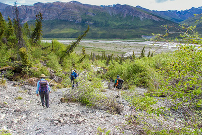 Associate professor Margaret Darrow, left, and state geologists Ronald Daanen and Trent Hubbard take GPS readings from a number of pre-installed stations as they hike down one of a series of frozen debris lobes which have appeared along hillsides in the Dietrich River valley in the southern Brooks Range, which could threaten the highway and the nearby trans-Alaska pipeline.  Filename: AAR-14-4214-179.jpg