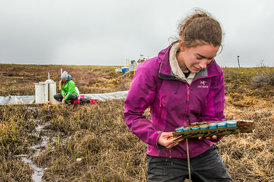 Ludda Ludwig, a Ph.D. candidate with UAF's College of Natural Science and Mathematics, collects water samples from a research site near the headwaters of the Kuparuk River on Alaska's North Slope.  Filename: AAR-14-4217-058.jpg