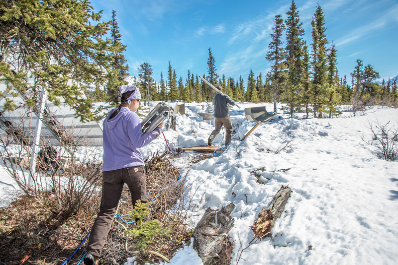 """Daisy Huang, left, a research engineer for the Alaska Center for Energy and Power, works with intern Luke George to install a meteorological station on a hillside near the Black Rapids Lodge, about 150 miles southeast of Fairbanks. The station will record wind speed and direction, as well as temperatures at different altitudes.  <div class=""""ss-paypal-button"""">Filename: AAR-13-3843-50.jpg</div><div class=""""ss-paypal-button-end"""" style=""""""""></div>"""