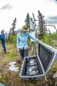 Associate professor Margaret Darrow, inspects batteries which power a weather station installed on one of  several frozen debris lobes which have appeared along the Dietrich River valley in the southern Brooks Range. Darrow, along with state geologists Ronald Daanen, left, and Trent Hubbard, are trying to figure out how to slow down or stop the movement of the lobes which threaten the Dalton Highway and the nearby trans-Alaska pipeline.  Filename: AAR-14-4214-480.jpg