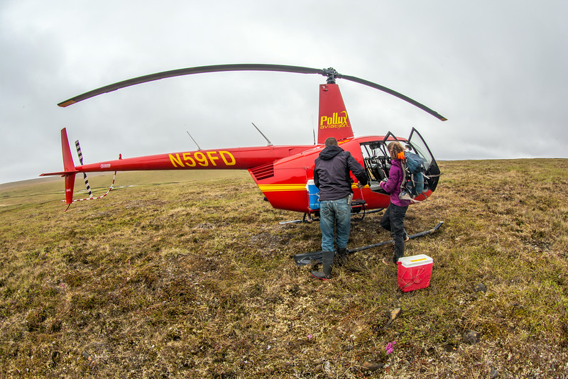 """Ph.D candidate Ludda Ludwig, right, helps unload a helicopter after a short flight from the Toolik Field Station to her research site near the headwaters of the Kuparuk River. Ludwig's study is focused on the movement of water and nutrients from Arctic hillslopes to streams. The Toolik research facility, located about 370 miles north of Fairbanks on Alaska's North Slope, is operated by UAF's Institute of Arctic Biology.  <div class=""""ss-paypal-button"""">Filename: AAR-14-4217-026.jpg</div><div class=""""ss-paypal-button-end""""></div>"""