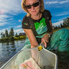 "Fisheries undergraduate student Patty McCall collect samples from the Chena River for a  research project on the life dynamics of Arctic brook lampreys.  <div class=""ss-paypal-button"">Filename: AAR-12-3468-054.jpg</div><div class=""ss-paypal-button-end"" style=""""></div>"