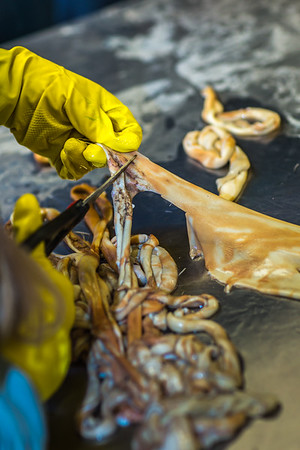 """Community members take a class on treating and making products with local reindeer hides at UAF's Northwest Campus in Nome.  <div class=""""ss-paypal-button"""">Filename: AAR-16-4865-021.jpg</div><div class=""""ss-paypal-button-end""""></div>"""