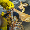 "Community members take a class on treating and making products with local reindeer hides at UAF's Northwest Campus in Nome.  <div class=""ss-paypal-button"">Filename: AAR-16-4865-021.jpg</div><div class=""ss-paypal-button-end""></div>"
