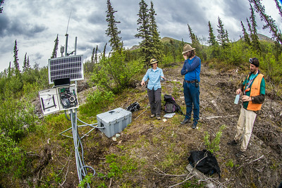 Associate professor Margaret Darrow, left, consults with state geologists Ronald Daanen, left, and Trent Hubbard at a remote weather station installed on one of several frozen debris lobes which have appeared along the Dietrich River valley in the southern Brooks Range about 225 miles north of Fairbanks. The three are trying to figure out how to slow down or stop the movement of the lobes which threaten the Dalton Highway and the nearby trans-Alaska pipeline.  Filename: AAR-14-4214-485.jpg