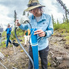 "Associate professor Margaret Darrow, inspects a tube which extends deep into one of several frozen debris lobes which have appeared along the Dietrich River valley in the southern Brooks Range. Darrow, along with state geologists Ronald Daanen, left, and Trent Hubbard, are trying to figure out how to slow down or stop the movement of the lobes which threaten the Dalton Highway and the nearby trans-Alaska pipeline.  <div class=""ss-paypal-button"">Filename: AAR-14-4214-490.jpg</div><div class=""ss-paypal-button-end""></div>"