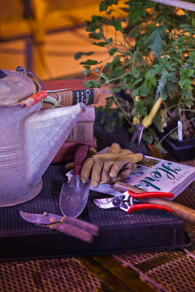 """Various gardening tools and books are used as props for a photo about growing herbs in Interior Alaska gardens.  <div class=""""ss-paypal-button"""">Filename: AAR-12-3256-33.jpg</div><div class=""""ss-paypal-button-end"""" style=""""""""></div>"""