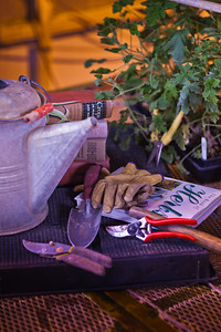 Various gardening tools and books are used as props for a photo about growing herbs in Interior Alaska gardens.  Filename: AAR-12-3256-33.jpg