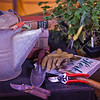"Various gardening tools and books are used as props for a photo about growing herbs in Interior Alaska gardens.  <div class=""ss-paypal-button"">Filename: AAR-12-3256-33.jpg</div><div class=""ss-paypal-button-end"" style=""""></div>"