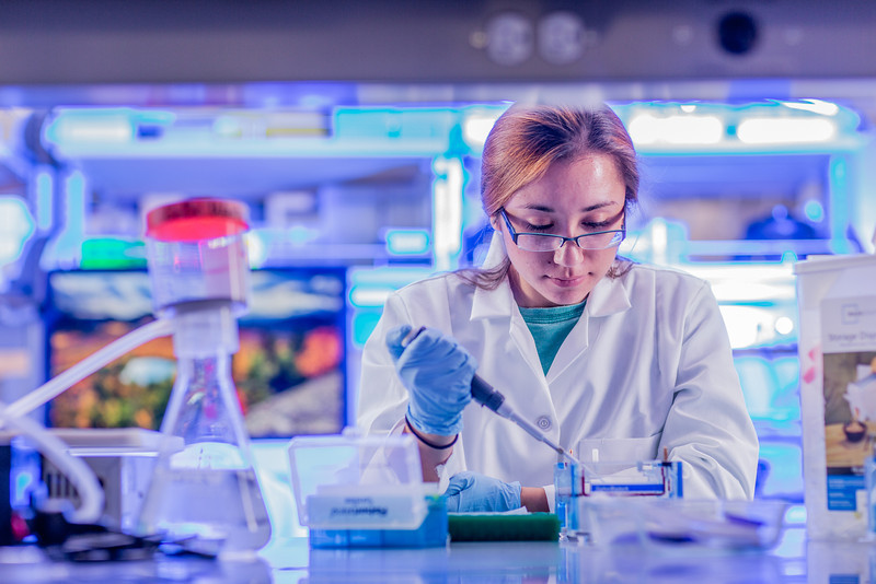 """Senior engineering major Shanann Hoyos performs gel electrophoresis to check results from a polymerase chain reaction assay in the Murie Building virology lab.  <div class=""""ss-paypal-button"""">Filename: AAR-13-3989-145.jpg</div><div class=""""ss-paypal-button-end"""" style=""""""""></div>"""