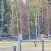"""An Aeryon Scout quadcopter, featuring a top speed of 30 mph and maximum flight time of 20 minutes, will be used to conduct a series of aerial flights this summer supporting wildlife research activities at UAF's Large Animal Research Station.  <div class=""""ss-paypal-button"""">Filename: AAR-14-4172-115.jpg</div><div class=""""ss-paypal-button-end""""></div>"""
